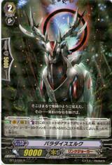 Paradise Elk R BT13/034