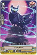 Howl Owl V-SS03/015