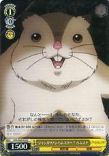 Hamsuke, Djungarian Hamster? OVL/S62-016 C