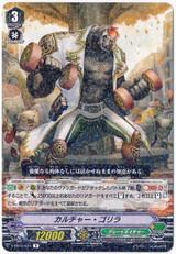 Culture Gorilla V-EB10/024 R