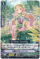 Fruiting Wheat Maiden, Enifa V-EB10/031 R