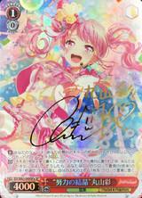 Crystallization of Effort Aya Maruyama BD/W63-049SPa SP