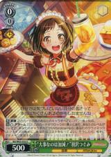 The Important Thing is Moderation! Tsugumi Hazawa BD/W63-032 U