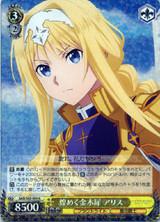 Alice, Sparkling Osmanthus SAO/S65-009 R