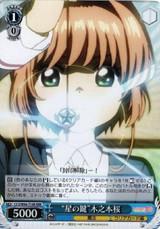 Key of Stars Sakura Kinomoto CCS/W66-T14R RRR