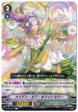 Maiden of White Calla V-EB14/054 C