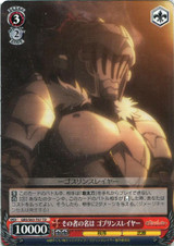 Their Name is Goblin Slayer GBS/S63-T07 TD