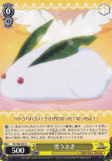 Snow Rabbit RZ/S68-001 R