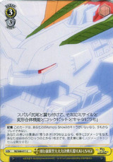YUKI-USAGI, Flying Assault-Type Heavy Firepower Battle Weapon RZ/S68-011 C
