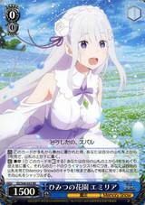 Emilia, Secret Garden RZ/S68-053 RR
