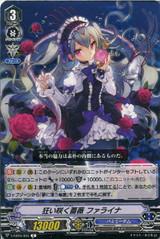 Rose Princess, Phalaina V-EB15/035 C