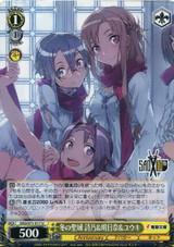 Shino & Asuna & Yuuki, Winter Sanctuary SAO/S71-017 U