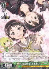 Suguha & Kazuto, Sunny Smile SAO/S71-035 R