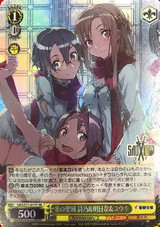 Shino & Asuna & Yuuki, Winter Sanctuary SAO/S71-017S SR