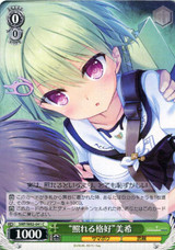 Shy Appearance Miki SMP/W82-041 C
