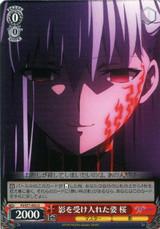 Sakura, Figure Who Accepted the Shadow FS/S77-052 U