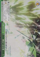 Evil to Cut Through SAO/S80-054R RRR