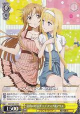Asuna & Alice, Street Corner Pinup SAO/S80-008 R