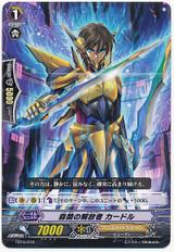 Liberator of Quiet, Cador TD16/010