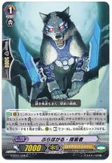 Bravogal Seeker C G-BT01/048