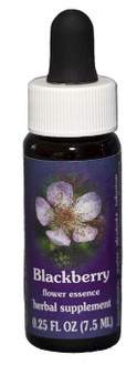 Blackberry Flower Essence