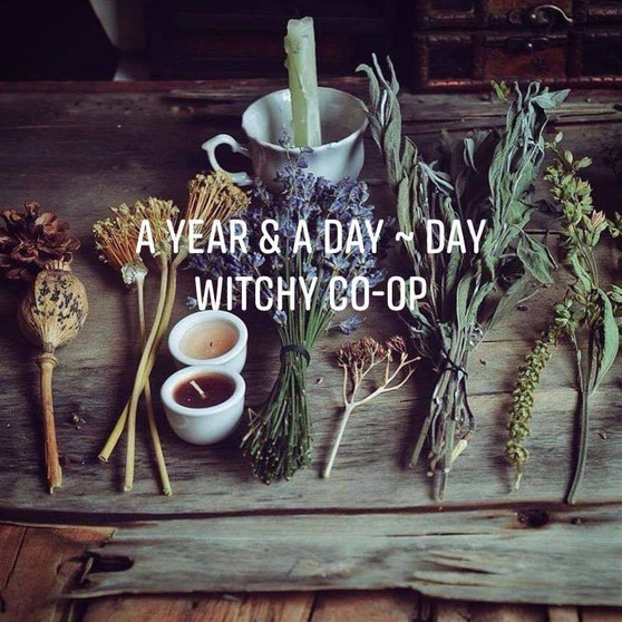 Witchy Co-op Box
