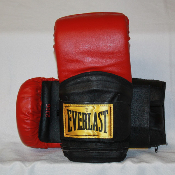 OLD SCHOOL - Very Hard to find EVERLAST weighted training gloves.
