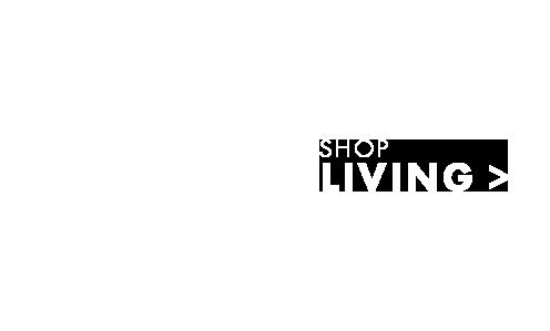 0004-living-vacuum-en.png