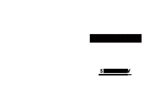 0004-rollink-s-en.png