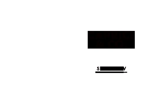 0010-caprice-s-en.png