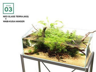 an example of what you can create with this beautiful DOOA Neo Glass H23 Terra tank!  this is used with a wabi-kusa hanger