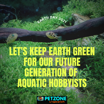 Happy Earth Day 2021 From Pet Zone Tropical Fish