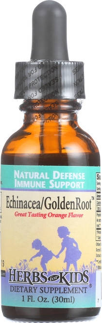 Echinacea Golden Root Orange