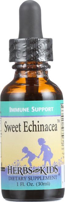 Echinacea Sweet