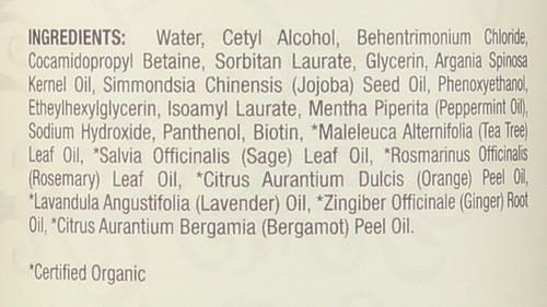 Essential Oil Conditioner Peppermint 16 Fl oz 474 Ml