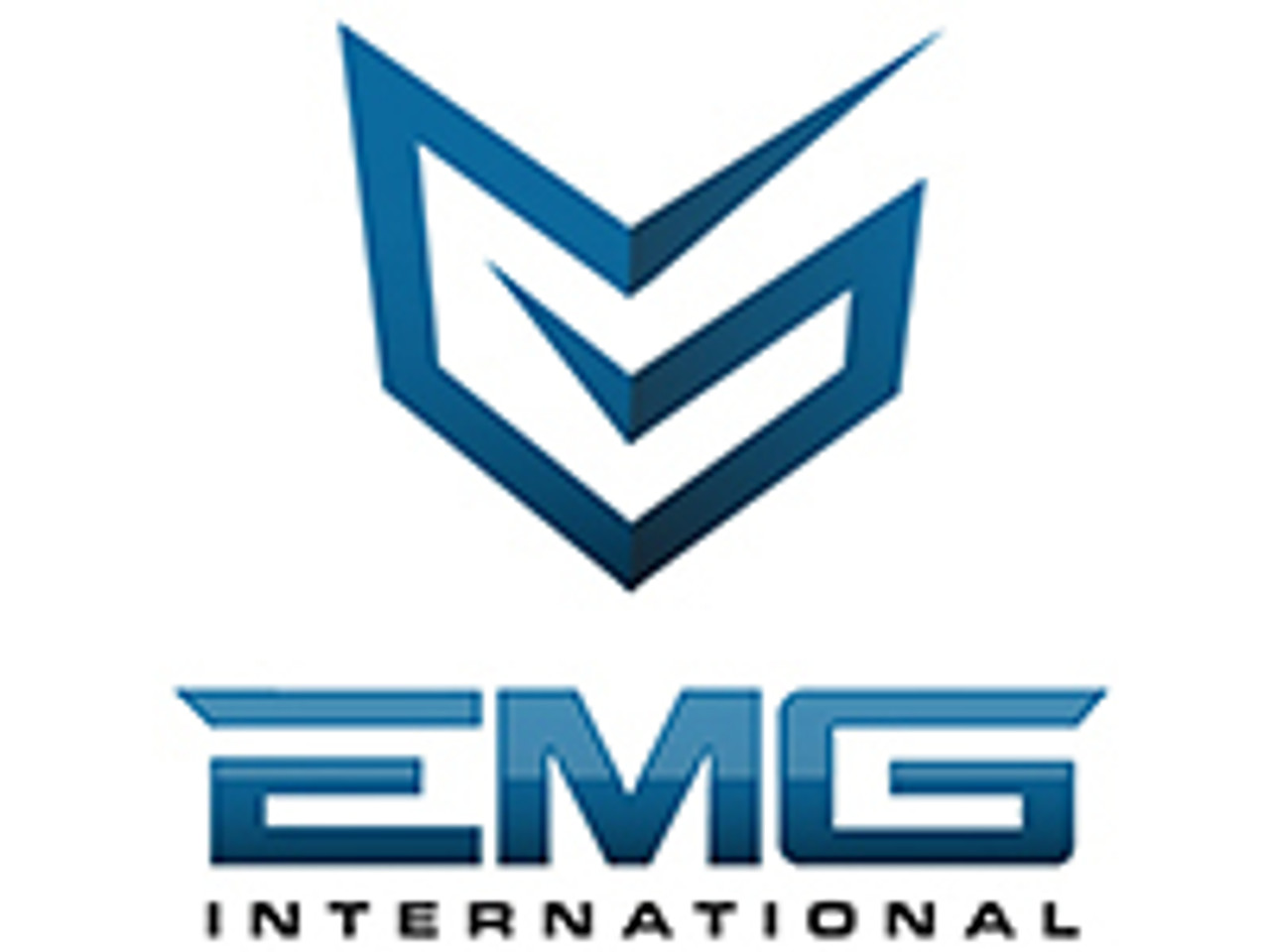 EMG INTERNATIONAL