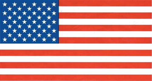 USA Flag FLAG6878