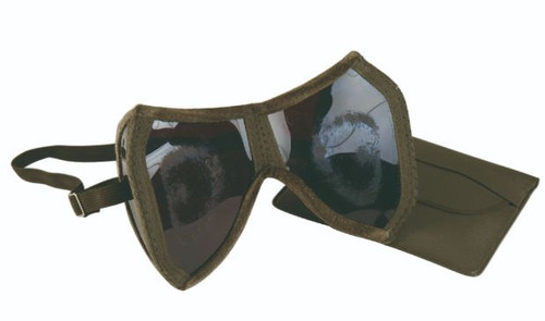 German Armed Forces Folding Goggles w/Pouch