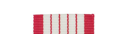 Canadian Armed Forces Centennial Slide Medal Bar