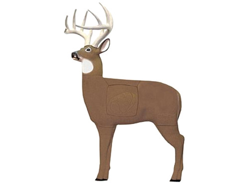 Glendel Pre-Rut Buck W/Vital Insert Target