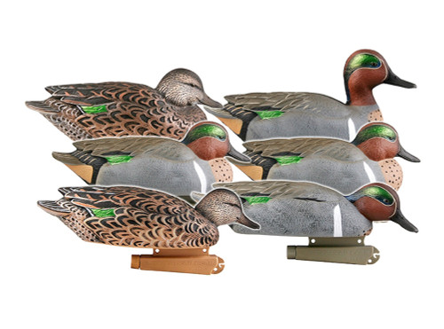 Green Winged Teal 6 Pk