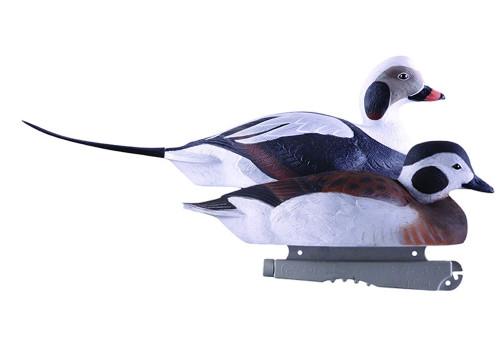 Pro Grade Long-Tailed Ducks 6 Pack