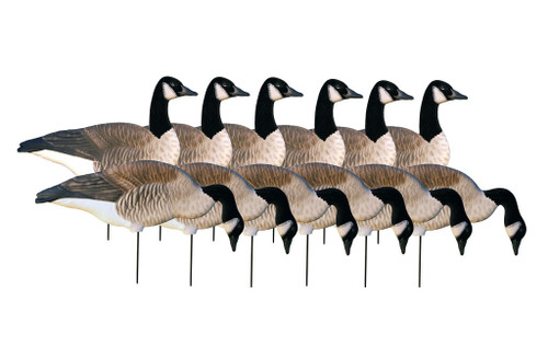 Pro Grade Silhouette Canada Goose 1 Dozen