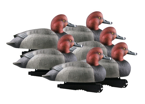 Over Size Redheads 6 Pack Foam Filled
