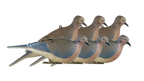 Mourning Doves 6 Pack
