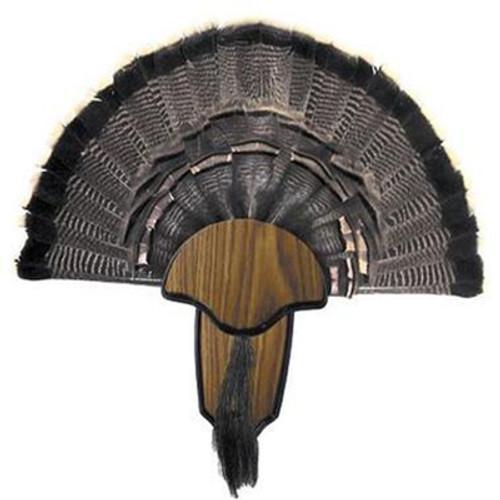 Turkey Tail & Beard Mounting Kit