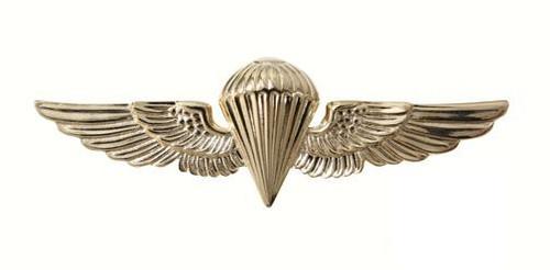 Pin - Parawing - U.S.N./U.S.M.C.