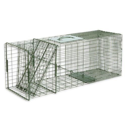 Duke Standard Large Animal Non-Lethal Cage Trap - Raccoons, Stray Cats and More