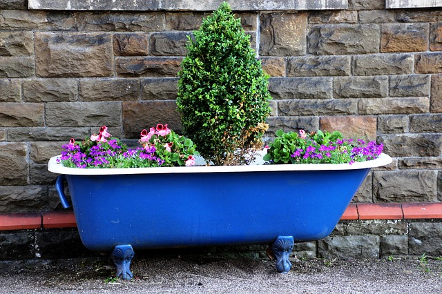 Best containers for potted plants