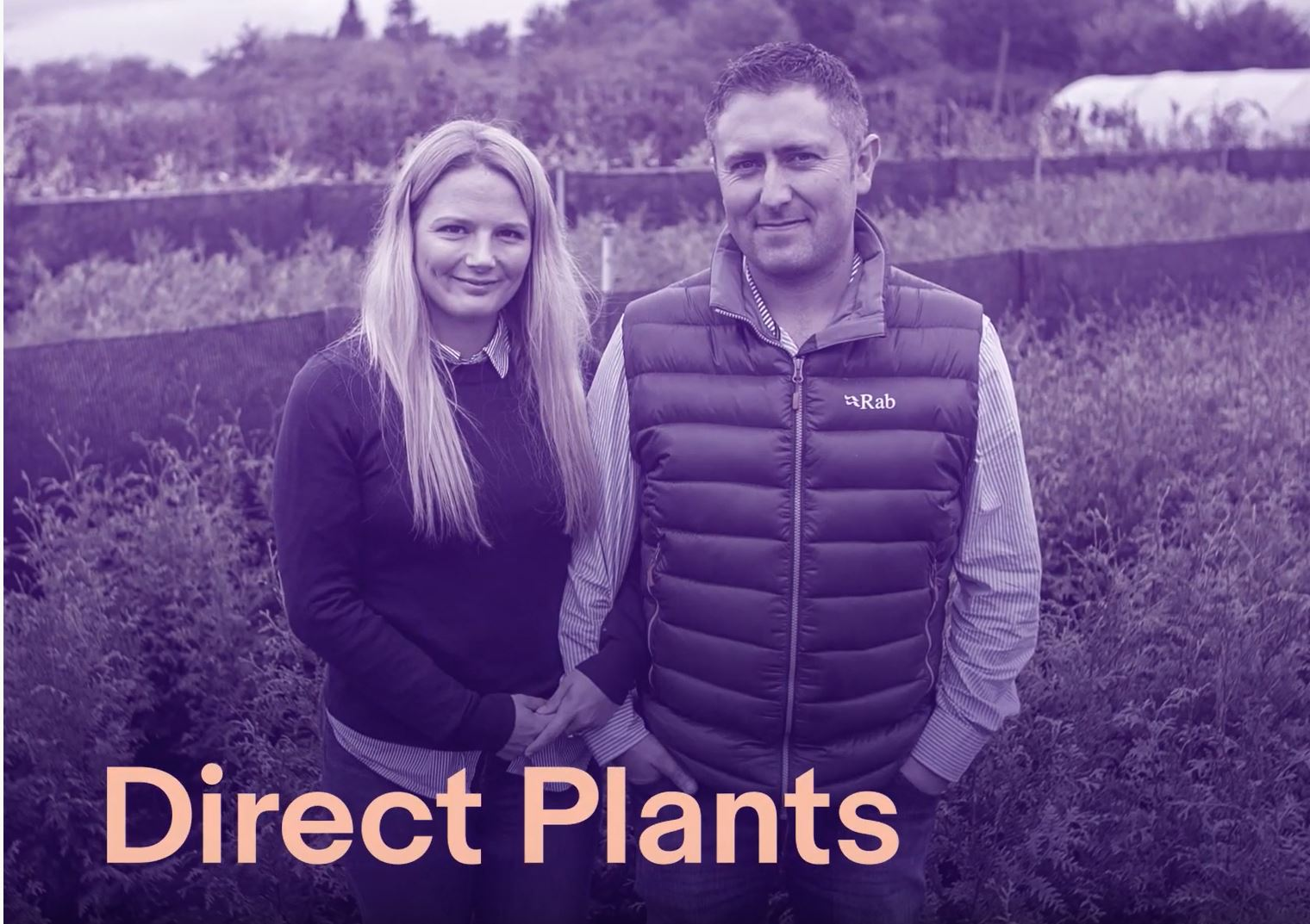 Take a look behind the scenes at Direct Plants